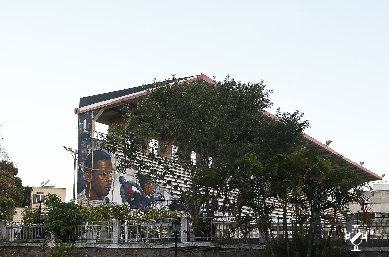 Grafite dá novas cores para São Januário